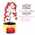 ต้นไม้หินมงคล ปะการังแดง (ชนิดย้อม) ตั้งโต๊ะ ขนาดย่อม เสริมฮวงจุ้ย