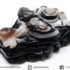 หินตาอาเกต-หัวมังกร มีเจาะรูทะลุ(Eye Agate) (30g)