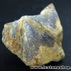 หอยโบราณเป็นหินจากประเทศจีน (8g)