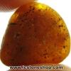 อำพัน บอลติก Genuine Baltic Amber (6.29ct)