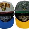 หมวกแก๊ป ประจำบ้าน 4 บ้าน