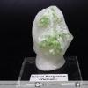 พาร์กาไซท์สีเขียว Green Pargasite จากประเทศเวียดนาม (49g)