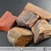 ▽ไม้กลายเป็นหิน Petrified Wood (11.1g)