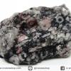 หินฟอสซิลหนอนโบราณ (21g)