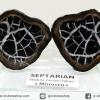 เซ็ปแทเรี่ยน Septarian ผ่าครึ่งขนาดตั้งโต๊ะพร้อมฐานแก้ว(243g)