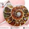 จี้ฟอสซิล แอมโมไนต์เหลือบรุ้ง(Ammonite) ผ่าครึ่ง (8g)