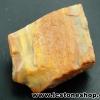 ▽ไม้กลายเป็นหิน Petrified Wood (8.1g)