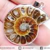 ▽จี้ฟอสซิล แอมโมไนต์เหลือบรุ้ง(Ammonite) ผ่าครึ่ง (10g)