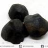 หอยโบราณเป็นหิน (คตหอย)จากประเทศลาว (26g)