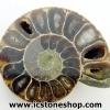 ▽ฟอสซิล แอมโมไนต์เหลือบรุ้ง(Ammonite) ผ่าครึ่ง(13g)