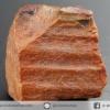 ไม้กลายเป็นหิน Petrified Wood (8.9g)