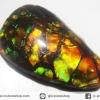 พลอยแอมโมไลต์ (Ammolite) อัญมณีโลกล้านปีสุดหายาก (2.39ct.)