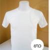 เสื้อยืดคอกลม TK สีขาว ไซส์ S ทรงตรง