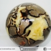 เซ็ปแทเรี่ยน Septarian (Dragon stone) หินทรงกลม (9 cm.,1.043 Kg)