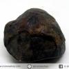 หอยโบราณเป็นหิน (คตหอย)จากประเทศลาว (23g)