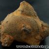 หินเหล็ก จากประเทศลาว(288g)