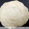 ฟอสซิลนัมมูไลต์ Nummulite จากประเทศอาร์มีเนีย (1.1g)