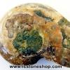 ฟอสซิล แอมโมไนต์เหลือบรุ้ง(Ammonite) (3.1g)