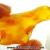 อำพัน บอลติก Genuine Baltic Amber (34.24ct)