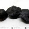 หอยโบราณเป็นหิน (คตหอย)จากประเทศลาว (25g)