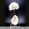 ต้นไม้มงคล หินควอตซ์ใส (Clear Quartz) -ฐานควอตซ์ ใช้เสริมฮวงจุ้ย โต๊ะทำงาน (144g)