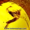 อำพันโดมินิกัน มีแมลงภายใน Dominican Blue Amber ของแท้(5.11ct)