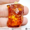 มีแมลงภายใน-จี้เงินแท้ชุบทองโคปอลธรรมชาติ (COPAL) อำพันอายุน้อยธรรมชาติ จากโคลัมเบีย Colombia Amber (40 กะรัต)