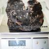สะเก็ดดาวเมืองนองขนาดใหญ่ Muong Nong Tektite (4.9Kg)