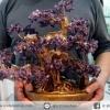 [โปรโมชั่น] ต้นไม้มงคล อเมทิสต์ Amethyst (สูง 33 cm)