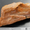 ไม้กลายเป็นหิน Petrified Wood (3.5g)
