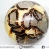▽หินมังกร - เซ็ปแทเรี่ยน Septarian (Dragon stone) หินทรงกลม (8.5 cm.,850g)