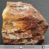 ไม้กลายเป็นหิน Petrified Wood (4.3g)