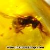 ▽อำพันโดมินิกัน มีแมลงภายใน Dominican Blue Amber ของแท้(4.77ct)