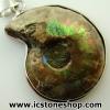 ▽จี้ฟอสซิล แอมโมไนต์เหลือบรุ้ง(Ammonite) ผ่าครึ่ง (9g)
