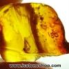 ▽อำพัน บอลติก Genuine Baltic Amber (3.04ct)