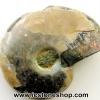 ฟอสซิล แอมโมไนต์เหลือบรุ้ง(Ammonite) (3.7g)
