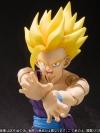 Dragon Ball Z - Son Gohan SSJ - Son Gohan SSJ2 - S.H.Figuarts (Limited Pre-order)