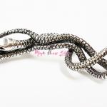 แหวนลูเซียส มัลฟอย งูสามหัว
