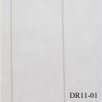 DR11-01