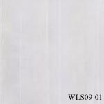 WLS09-01