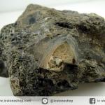 กระดูกไดโนเสาร์จากรัฐยูท่าห์ USA (Agatized Dinosaur Bone) (232.1g)