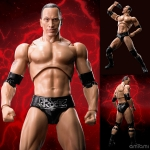 S.H. Figuarts - The Rock(Pre-order)
