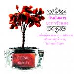 07.ต้นไม้หินมงคล ปะการังแดง (ชนิดย้อม) ตั้งโต๊ะ ขนาดย่อม เสริมฮวงจุ้ย