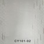 CY101-02
