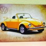 VW BEETLE**R16**