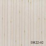 DR22-02