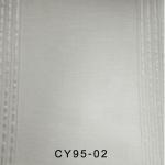 CY95-02