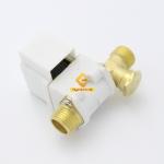 Solenoid Valve โซลินอยด์วาล์วพลาสติก เกลียวทองเหลือง 4หุน 12VDC แถมฝาครอบ