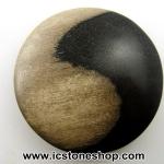 พลอยไม้กลายเป็นหิน รูปหยินหยางใหญ่ (226.5ct)