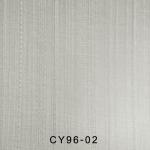 CY96-02